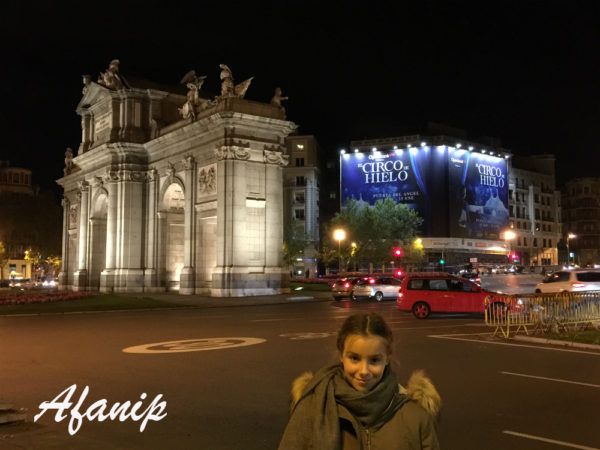 afanip madrid